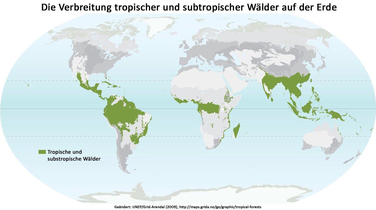 Tropische und subtropische Wälder